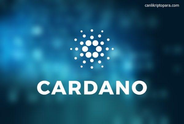 cardano coin