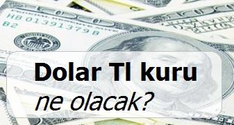 Dolar TL kuru Kasım 2015'te nasıl olacak