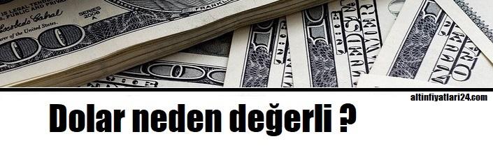 Ucuz dolar mümkün mü? Dolar neden her zaman değerli?