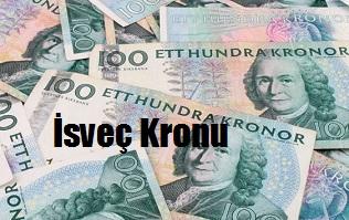 İsveç Kronu kaç tl eder? USD SEK ilişkisi